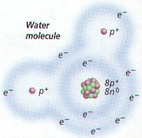 [Image: watermolsmall2.jpg]