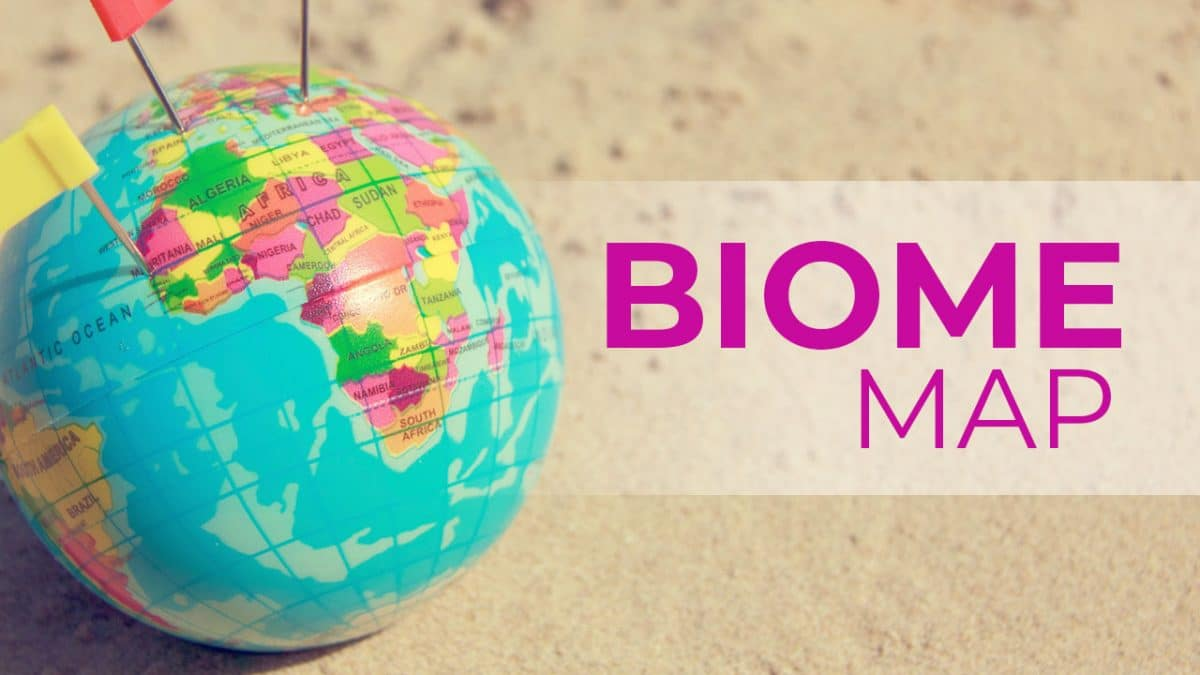Biome Map: Definition, Examples, And Why It Is Important