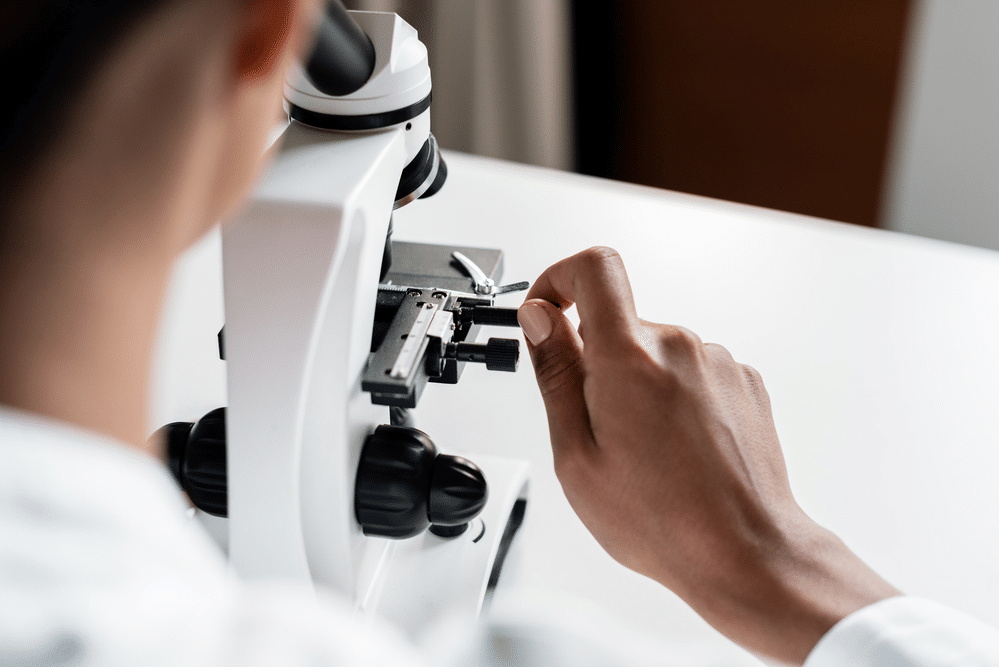 How to Prepare a Microscope Slide to Zoom In on a Specimen