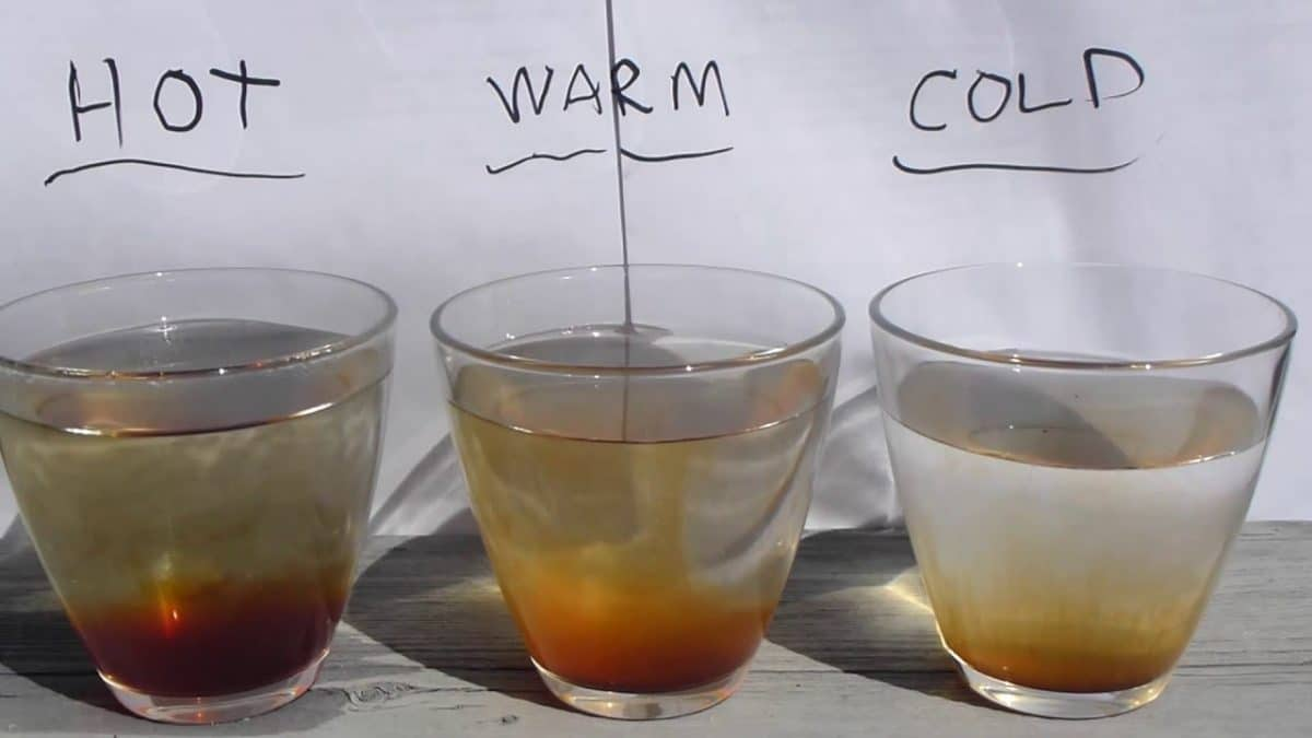 Osmosis vs. Diffusion 101: Definitions, Examples, and Practice Problems