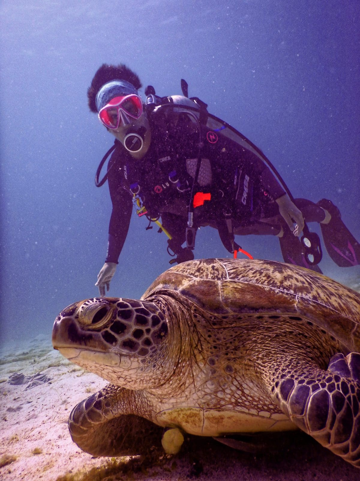 Photo of a man and turtle underwater
