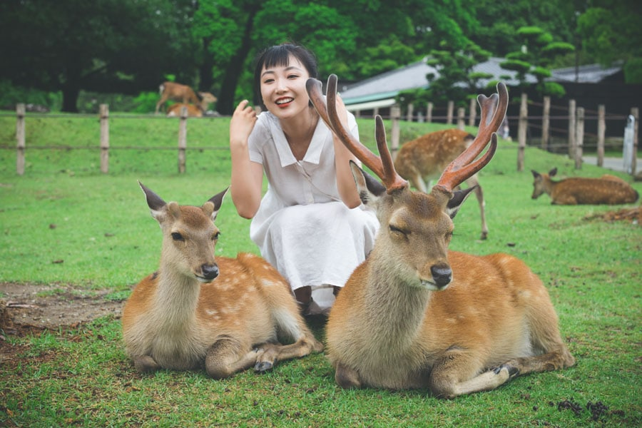 Zoologist together with the two deers